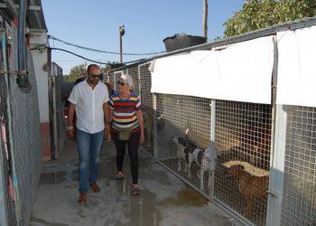 El alcalde, Miguel Alconchel, visita las instalaciones de la perrera, en imagen de archivo