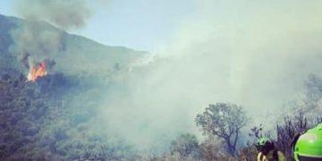 Bomberos trabajando en el incendio de Sierra Bermeja