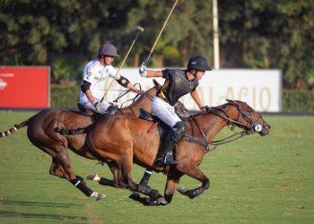 MB Polo vs Bardon