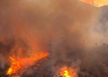 El paraje de Peñas Blancas en Estepona en llamas