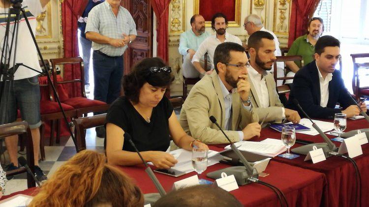 Carmen Álvarez, en el pleno de organización de la Diputación de Cádiz