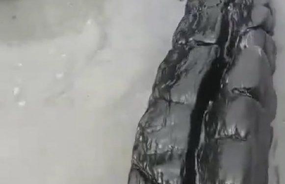 Imagen de fuel en la playa tarifeña, aportada por los ecologistas