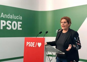 Araceli Maese, en rueda de prensa