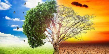 Preocupación por el cambio climático