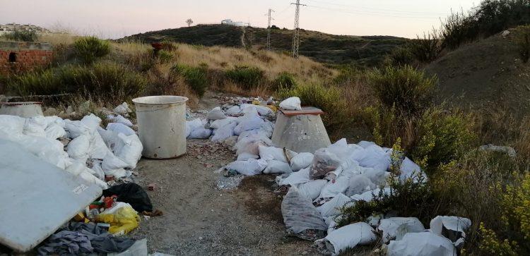 Imagen facilitada por los ecologistas