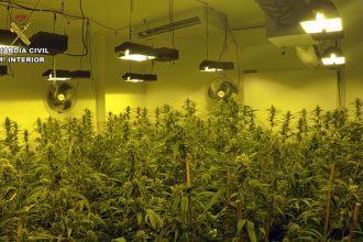 Operación cultivo marihuana
